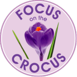focus_on_the_crocus