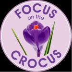 focus_on_the_crocus